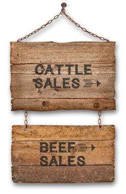 Flathead Farms Cattle and Beef Sales